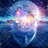 Formation du Cerveau...