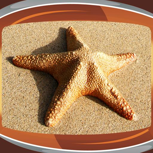 Starfish Live Wallpapers