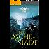 FAAR - Das versinkende Königreich: Die Aschestadt (Band 1): Fantasyroman