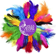 Asian Hobby Crafts Natural Dyed Feathers,Multi Color (50 Pieces)