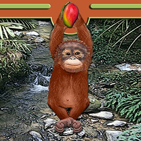 Orangutan of the Jungle (Jungle Orangutan)