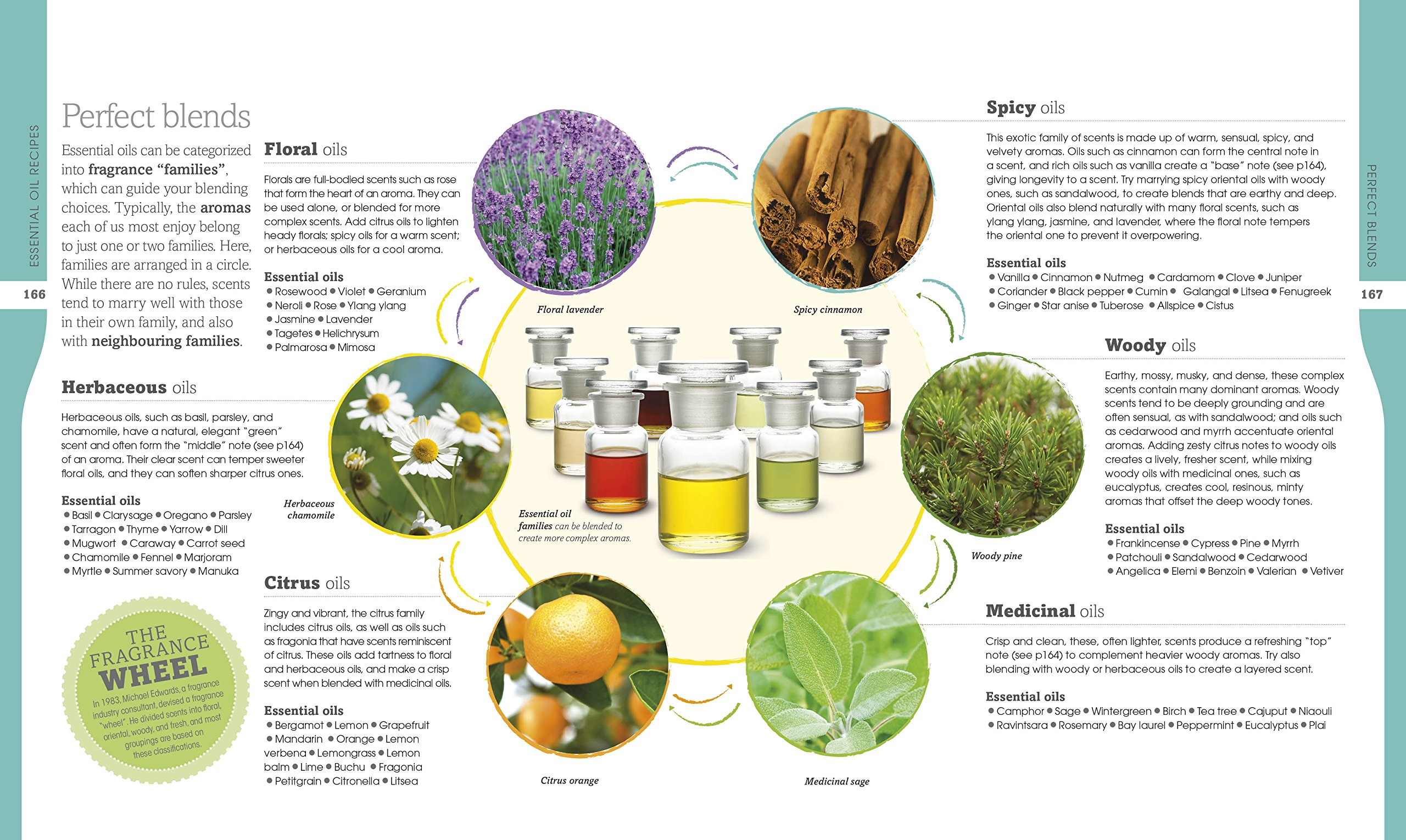 Neal's Yard Remedies Essential Oils: Restore * Rebalance * Revitalize * Feel the Benefits * Enhance Natural Beauty…