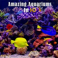Amazing Aquariums In HD