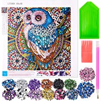 Tateangnik 17 * 17 Pouces Broderie Diamant Painting for Enfant Adultes, Diamond Painting Strass Complet pour Les Enfants…