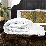 Silk Bedding Direct Couette en Soie. Continental Queen Size. Poids Été. 100% Soie de Mûrier. Hypoallergénique. 240 cm x 220 c