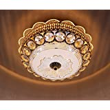 swanart Peacock Chandeliers for Living Bedroom Ceiling Lights & Lamps 12 inch with Bluetooth Connect Play Songs