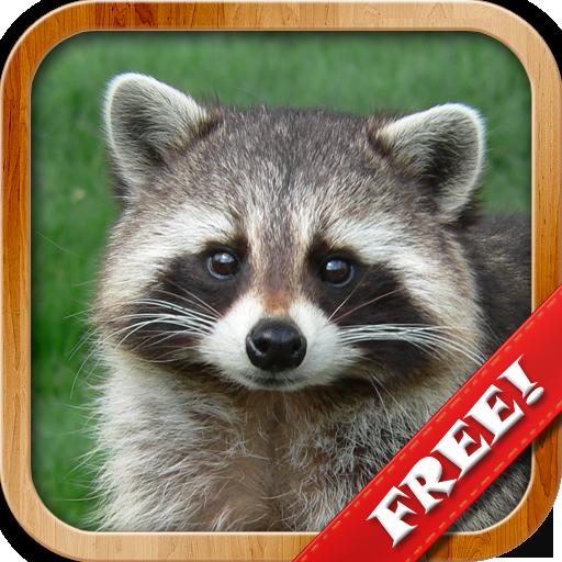 Tiere für Kleinkinder, Meine Ersten Wörter Spiele