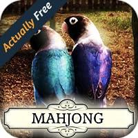 Hidden Mahjong: Soulmates