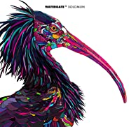 Watergate 11 - mixed by Solomun