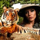 Tiger Cornici