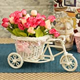 TIED RIBBONS Plastic Cycle Shape Flower Vase with Peonies Bunches (Standard, Multicolour)