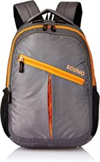 Amazon Brand - Solimo Svelte Laptop Backpack for 15.6-inch Laptops (27 litres,Grey)