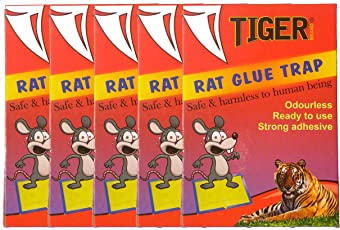 """MMR Tiger """"Rat Glue Trap"""" Set Of 5 - Mouse Insect Rodent Lizard Trap Rat Catcher Adhesive Sticky Glue Pad (9X7 Inch)"""