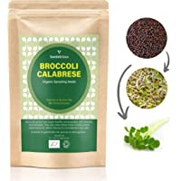 SEEDELICIOUS Organic Broccoli Calabrese Sprouting Seeds 250g with High Sulforaphane Content | Non-GMO | Easy to Sprout in 5 Days| High Germination into Microgreens in 10 Days