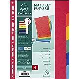 Exacompta Colorspan 1406E - Juego de 6 separadores de cartulina lustrada DIN A4, colores vivos