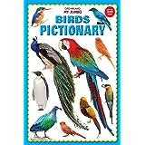 My Jumbo Birds Pictionary