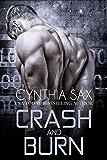 Crash And Burn (Cyborg Sizzle Book 3) (English Edition)