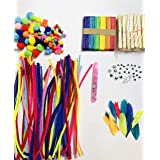Paaroots 20 Pcs Pipe Cleaners with Ice Cream Sticks (100) 2 Kind of Googly Eyes 20 Mix Pom Pom DIY Art and 1 Glue 2 Pkts Feat