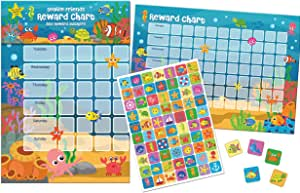 210 x 300mm Paper Projects 01.70.30.011 A3 Superstar Reward Chart-Reusable