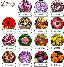 Kraft Seeds 15 Varieties of Flower Seeds Heirloom Seed For Your Garden Beautiful Bloom This Season Genuine High Germination Seeds