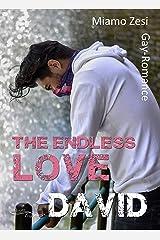 David: The endless love Kindle Ausgabe