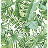 A-Street Prints 2744-24136 Wallpaper, Green