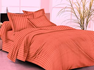 """Trance Home Linen 100% Cotton 210 TC King Fitted Bedsheet 78"""" * 72"""" with 2 Pillow Covers"""