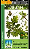 Bäume (iFlora Pflanzenführer 1)