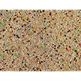 Bird Food Small bird Budgie finches canaries hookbills doves quail and sparrows Seed mix (1kg, Budgie)