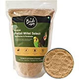 The Birds Company Premium Foxtail Millet (Kangni) Select, Fortified with Spirulina & Cuttlefish Bone, Bird Food for Canaries,