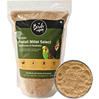 The Birds Company Premium Foxtail Millet (Kangni) Select, Fortified with Spirulina & Cuttlefish Bone, Bird Food for…