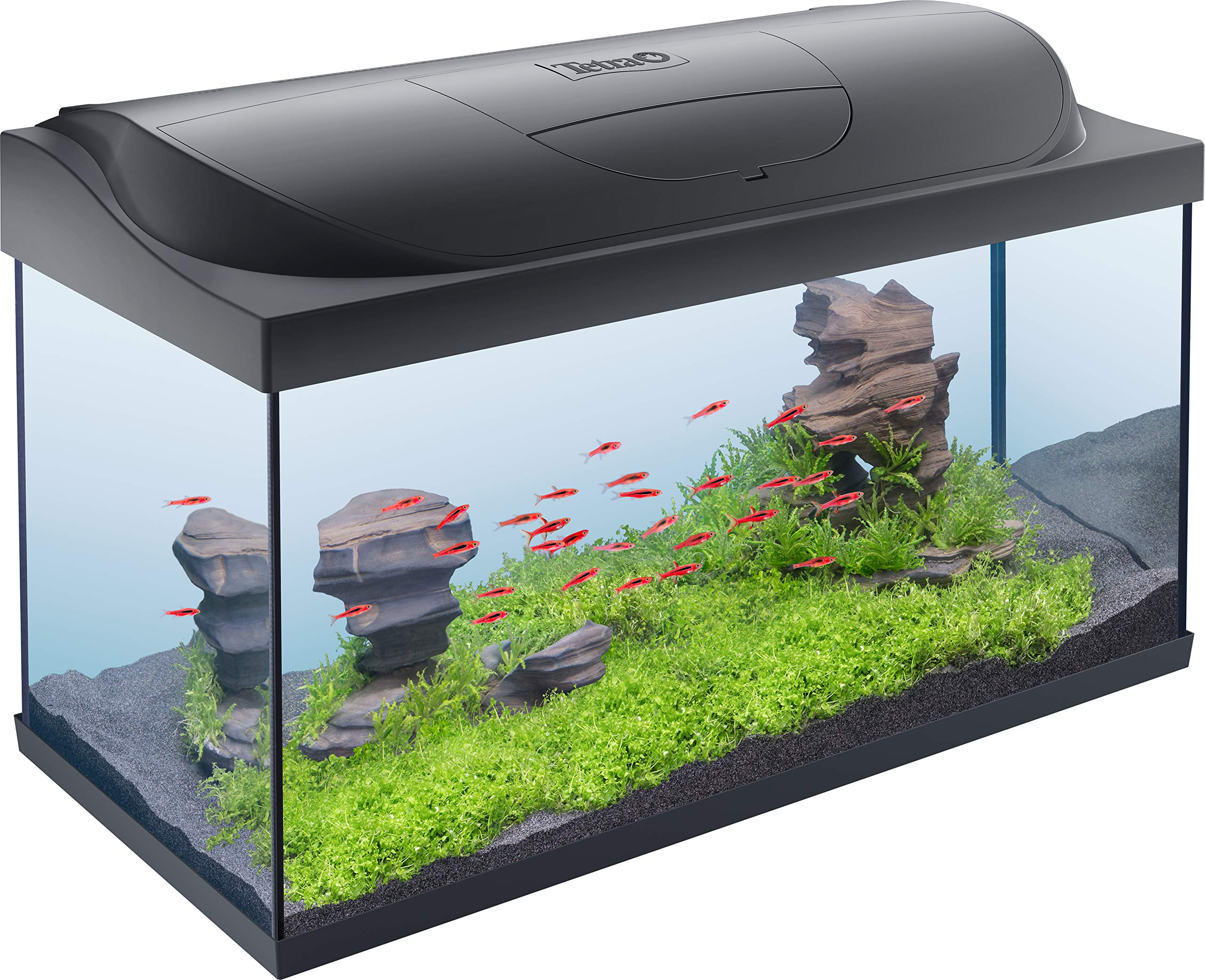 54 L Tetra Aquarium Starter Line Tank
