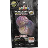 OKIKO Platinum Head Huncher & Color Faster 100g (Best Food for Flowerhorn Head and Color Development) ** COLOURFUL AQUARIUM *