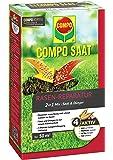 Compo Saat® kit de réparation du gazon comprenant des graines et de l'engrais, gazon à semer et engrais en une seule étape, pour une réparation du gazon réussie, 1,2kg pour 50m²