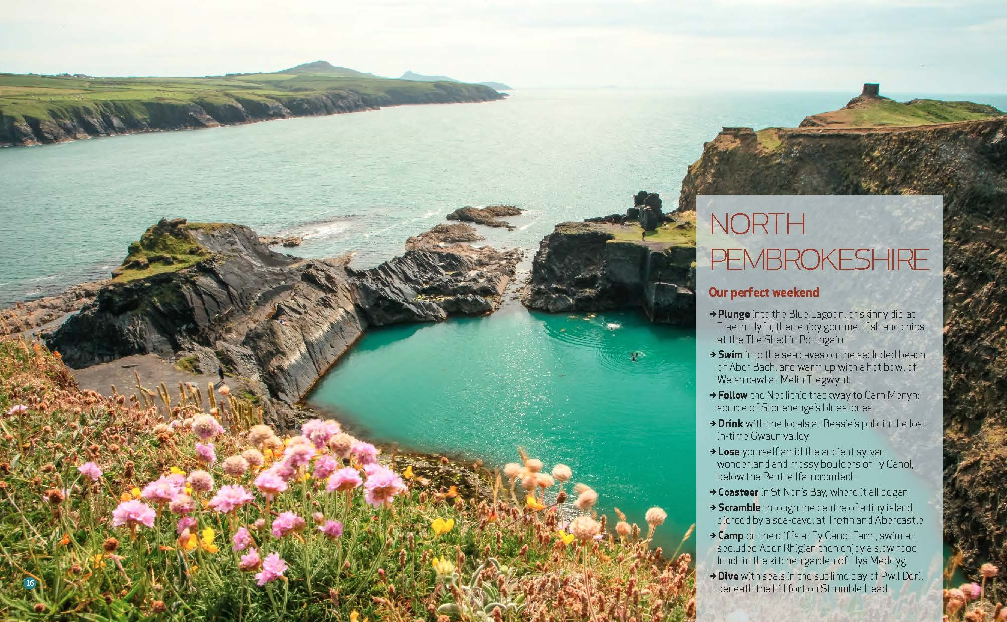 Wild Guide Wales and the Marches (Wild Guides) 17