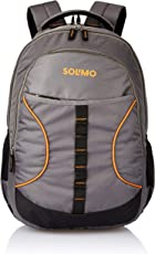 Amazon Brand - Solimo Urban Laptop Backpack for 15.6-inch Laptops (29 litres,Grey)