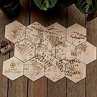 Carte de la terre du milieu - 12 sous-verres en bois - Le Seigneur des Anneaux - The Lord of the Rings Collection