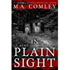 In Plain Sight (A Hero Series Book 3) (English Edition)