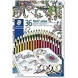 Noris Colour 185 - Astuccio di cartone doppio strato, 36 matite colorate, colori assortiti