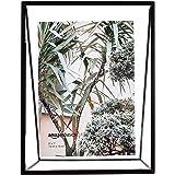 Amazon Basics - Cadre photo flottant de forme triangulaire - 22,9 x 8,9 x 17,8 cm - Noir