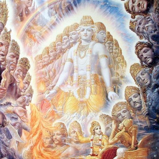 Bhagavad Gita Multilingual (Mahabharata-buch)