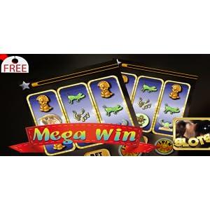 Online casino mit live dealer