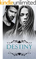Destiny – Dich zu wollen (Frankfurt In Love 1)