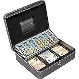 ARREGUI Cashier C9246-EUR Caisse à Monnaie avec Plateau pour Les Pièces de Euro et Les Billets, 30x24x90 cm, Couleur Gris Gra