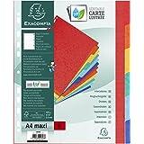 Exacompta - Réf. 2606E - Intercalaires en véritable carte lustrée rigide 400g/m2 FSC avec 6 onglets neutres - Page d'indexati