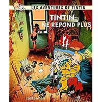 Peinture sur Toile Art Affiche Autocollant Les Aventures De Tintin Décor À La Maison Art sans Cadre Peinture Murale…
