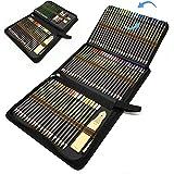Matite Colorate Professionali, Set da 96 pezzi di matite da disegno e per schizzi in un astuccio con zip, Kit Arte per Schizz