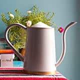 ecofynd 2 Litre Garden Watering Can for Plants with Long Spout, Color - White, Size - WC3: 2 L with spout