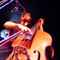 Double Bass Lessons For Beginners