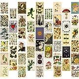 50 Stück Vintage Botanical Wall Collage Kit, ästhetisches Bild Indie Room Decor, Art Poster für Wohnheim-Wanddekoration, Wand